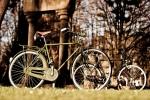 Bicicleta Varillas Taurus Corinto Verde Alfa