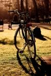 Bicicletas clasicas Taurus